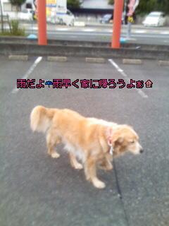 Image004~15