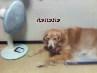 Image004~22