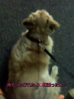 Image047~05