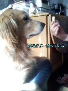 Image011_20100222134329.jpg