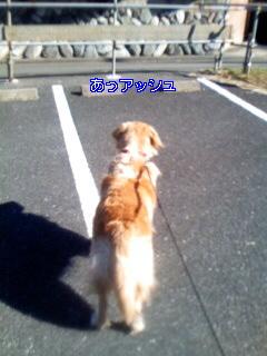 Image034_20100127134905.jpg