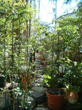 garden10-3.jpg