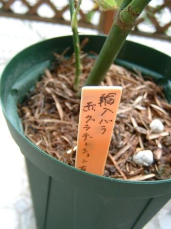 sashiki10-3.jpg