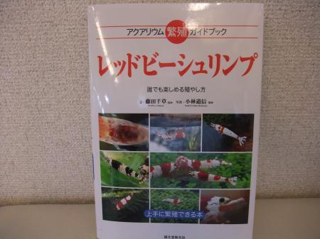 DSCF7279_convert_20110526173402.jpg