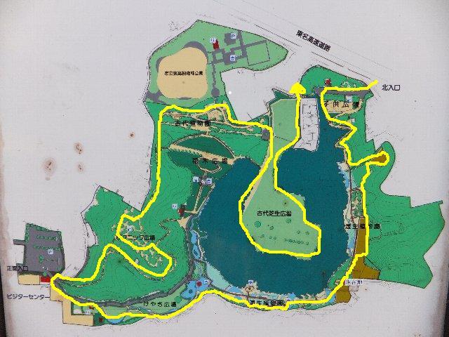 東高根森林公園 地図