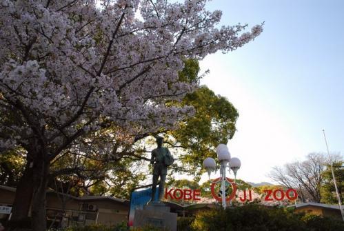 DSC_1563 ブログ