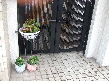 2011_09040004.jpg