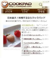cookpic.jpg