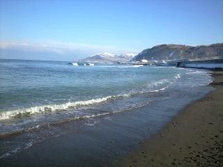 美味しい状態の 海!