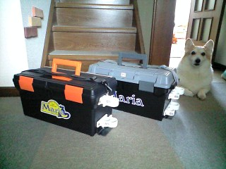 2011-3-21 BOX
