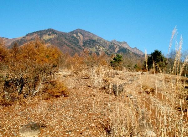 PA310021.JPG登山道2.jpg
