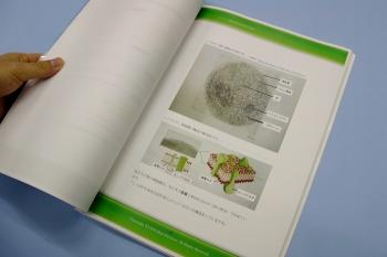 bookimage4.jpg