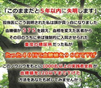head-H1_20110111131750.jpg