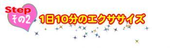 step2_20100115185811.jpg