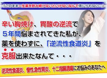 top-H6_20101222182631.jpg