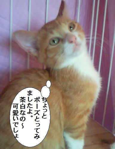 いっちゃん091007_2