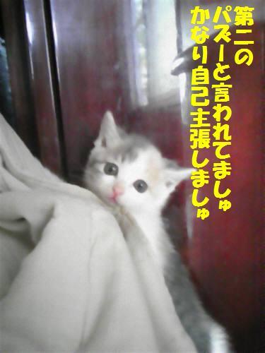 うみゃん091018_1