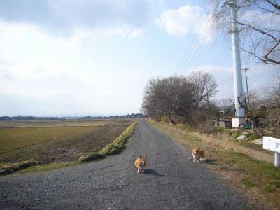 3日川越運動公園3
