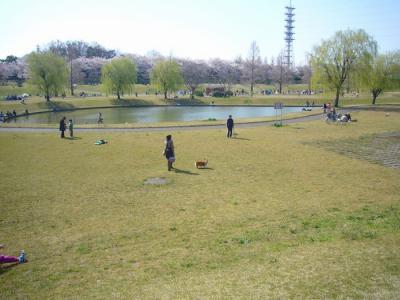 8日第二公園5