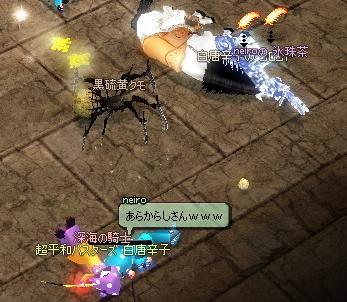 mabinogi_2011_12_28_026.jpg