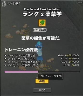 mabinogi_2012_01_08_003.jpg
