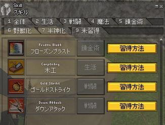 mabinogi_2012_01_19_006.jpg
