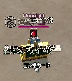 mabinogi_2012_01_29_017.jpg