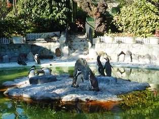 20091202  初めての動物園 011