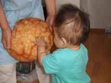 颯ちゃんとメロンパン