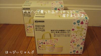 DSC02187_convert_20120128060842.jpg