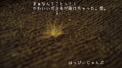 DSC03020_convert_20120218092941.jpg