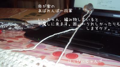 DSC04119_convert_20120318212546.jpg
