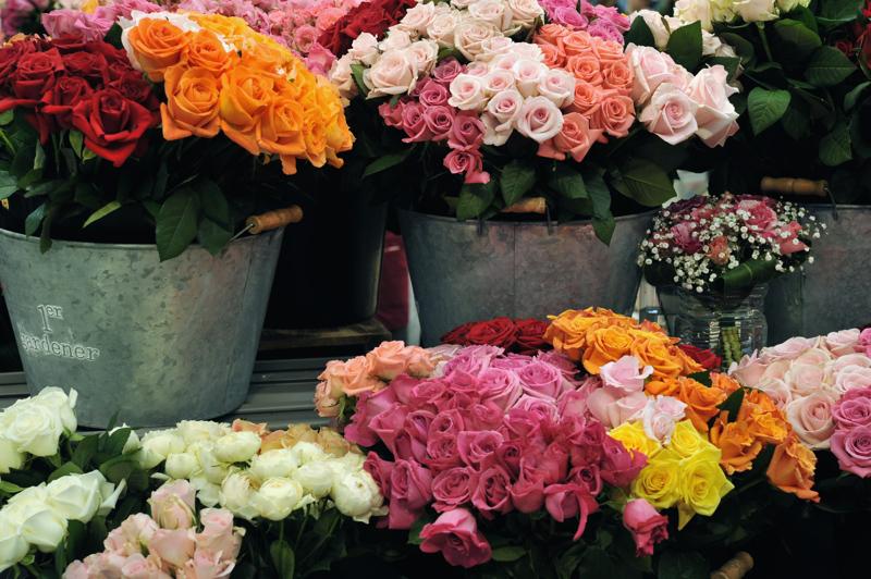 rosebasket