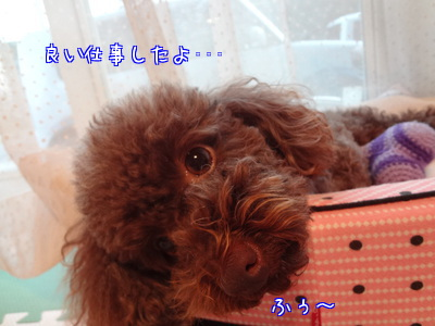 uAe_O.jpg