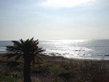 海がキラキラ