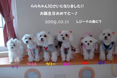 20091011-12D-338_20091013235315.jpg