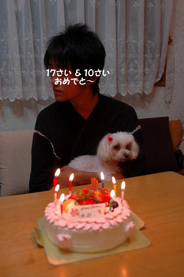 20091017D-021.jpg
