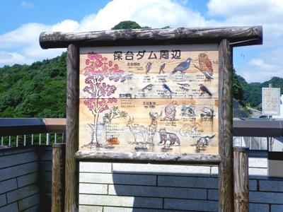 0-kamogawa6x.jpg