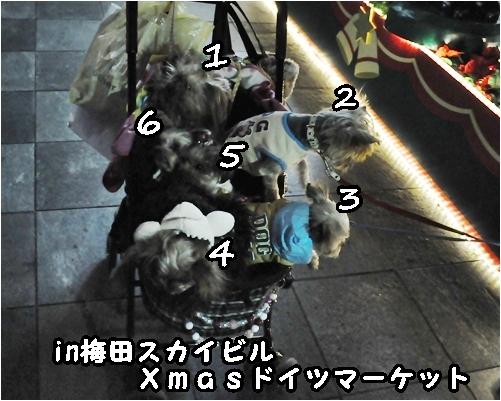 10_20120206233944.jpg