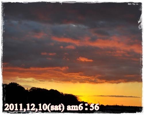 1_20120119202128.jpg