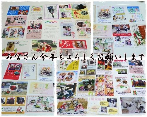 2_20120112185052.jpg