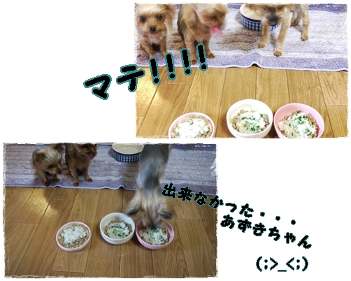 2_20120117001149.jpg