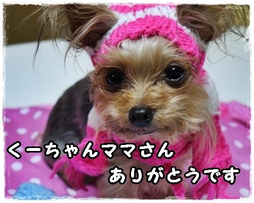 2_20120229224012.jpg