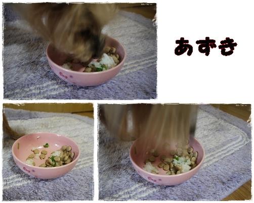 3_20120117001149.jpg