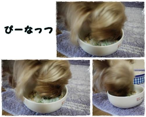4_20120117001149.jpg