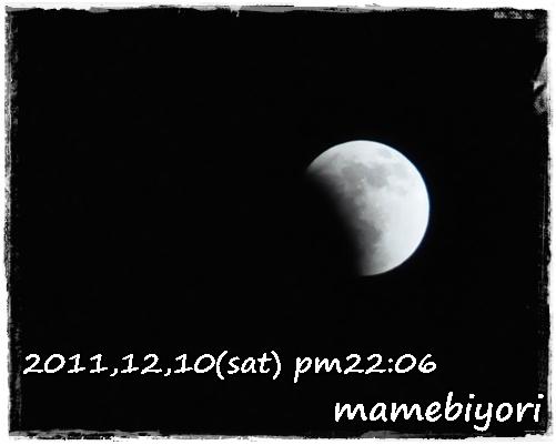 4_20120119202127.jpg