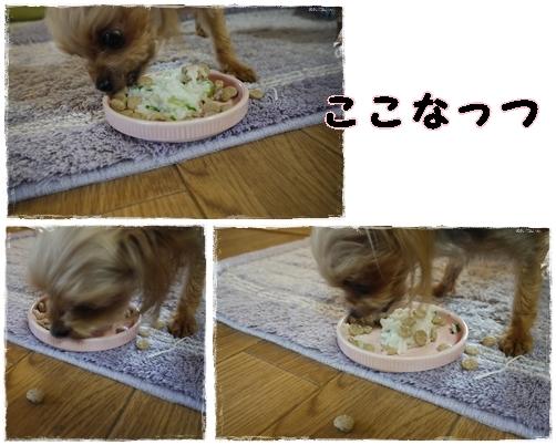 5_20120117001148.jpg