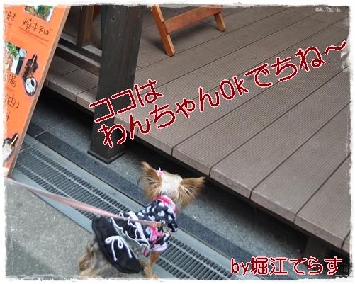 7_20111202221442.jpg