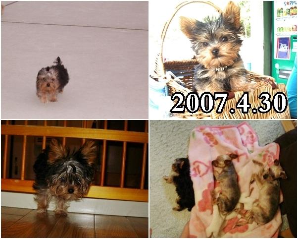 8_20120229224053.jpg