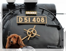 D51_4.jpg